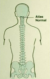 Normal Alignment